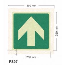 Flecha direccional fotoluminiscente